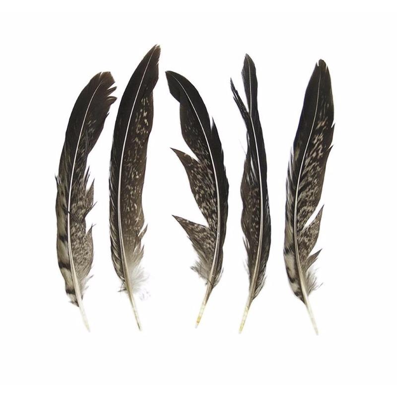 Decoratie fazant veren 13 cm 5 stuks