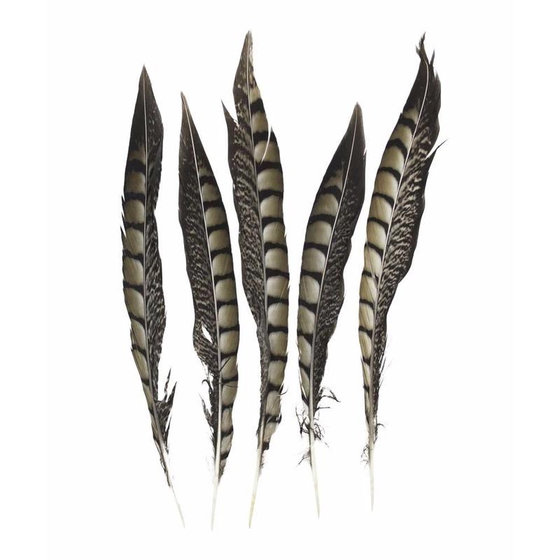 Decoratie fazant veren 28 cm 5 stuks