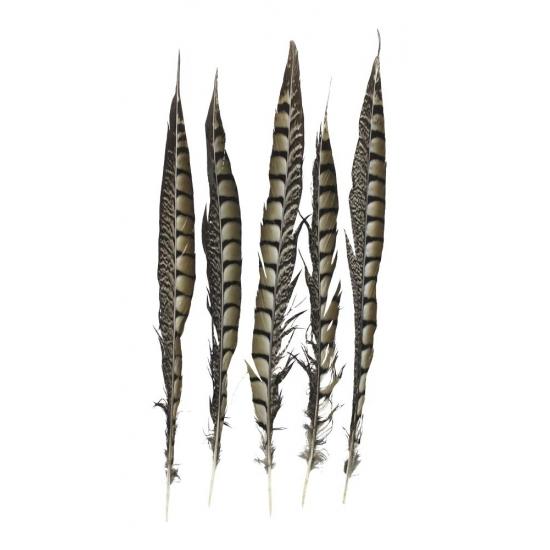 Decoratie fazant veren 38 cm 5 stuks